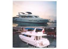 Western Cruiser E1